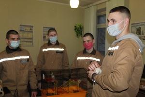 В Кіноклубі DOCUDAYS UA вихованці Кременчуцької виховної колонії говорили про домашніх тварин