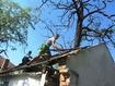 Полтавщина: співробітники Кременчуцької виховної колонії допомогли в реконструкції будівель музею А.С. Макаренка