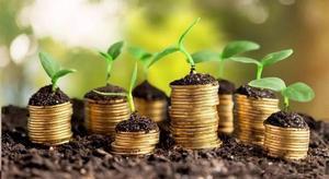 Предприятия МХП — крупнейшие доноры бюджетов всех уровней в Киевской области