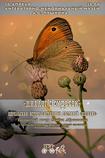 В Одессе пройдёт творческий вечер поэта Семёна Абрамовича