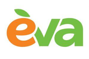 Линия магазинов EVA: краткие итоги 2020 «карантинного» года