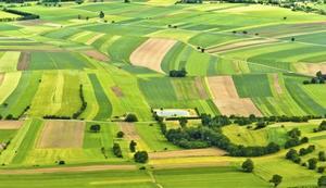 Черкаські ОТГ чекають на  прийняття закону,  що дозволить їм у повній мірі розпоряджатися своєю землею