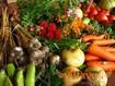 В Україні починають повертатися до екологічно чистого землеробства – неорганічні добрива аграрії починають доповнювати «природніми» кремнієвими