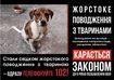 Всесвітній день доброти зібрав допомоги на 6 тисяч гривень для безпритульних тварин Черкащини